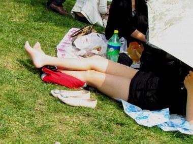 参赛+jim2+第175贴+一个草地的 肉 丝 MM 很像模拍 我喜欢的角度(16p) - VIP街拍图片发布- 街拍第一站