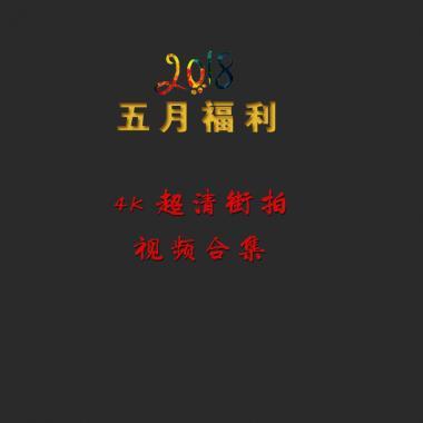 VIP视频合集  4K超清  美 女   视 频 街拍第一站全网原创独发!